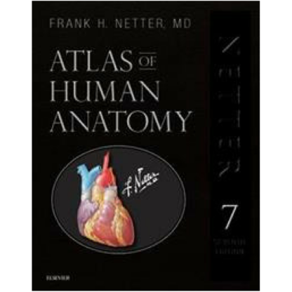 atlas of human anatomy netter 9780323554282