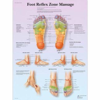VR1810L_01_Foot-Reflex-Zone-Massage-Chart